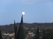 Dr B took this pic of the moon