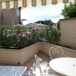 View of the patio