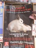 Festival poster - one for Basil Bun!